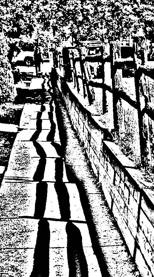 Spring shadows 01